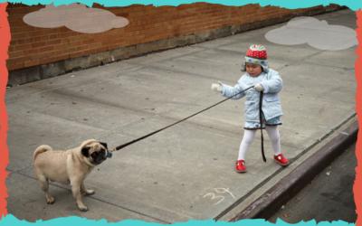 La importancia de un buen paseo