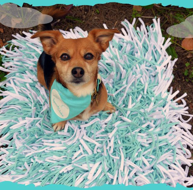 alfombra-olfativa - copia